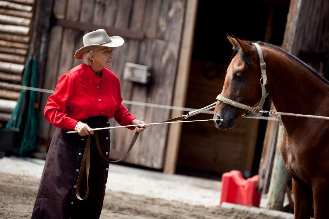 ranč kaja in grom Tellington TTouch konji linda