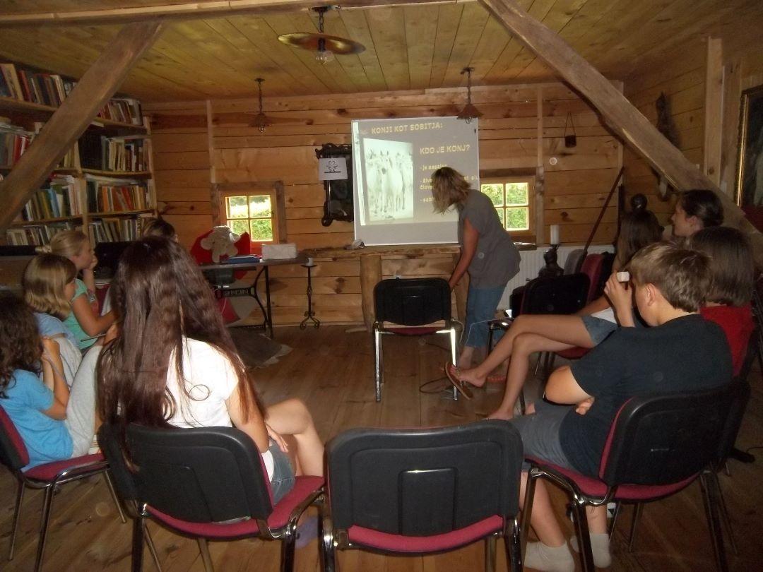 ranč kaja in grom Tellington TTouch mladi 12 seminar