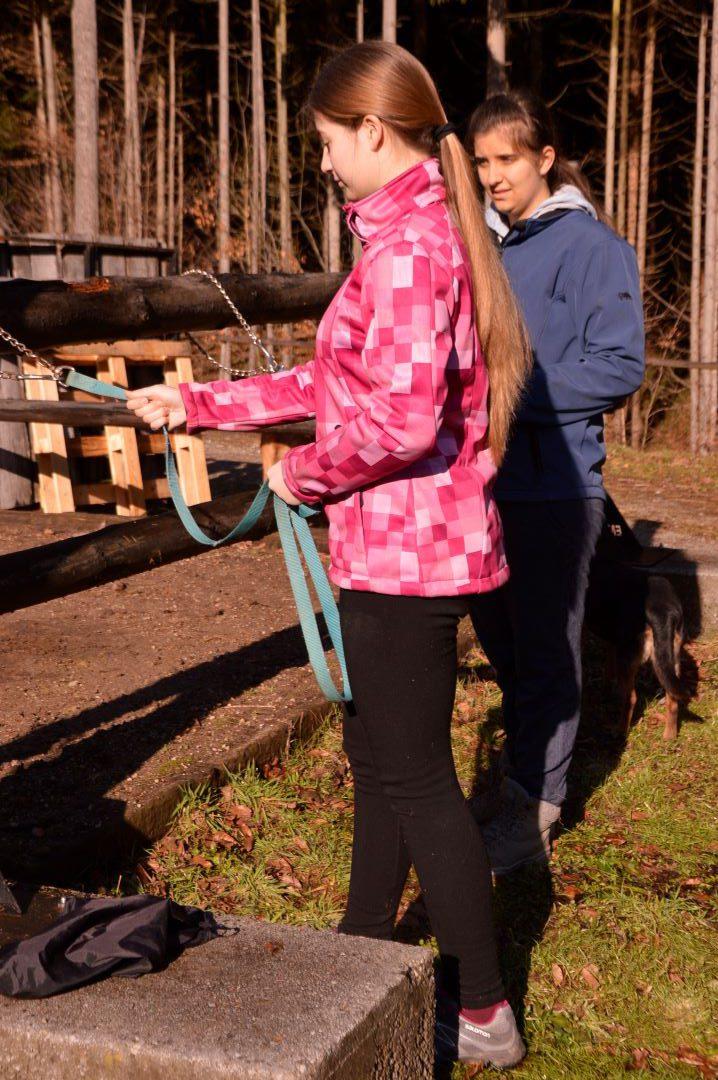 ranč kaja in grom Tellington TTouch mladi vodenje konja