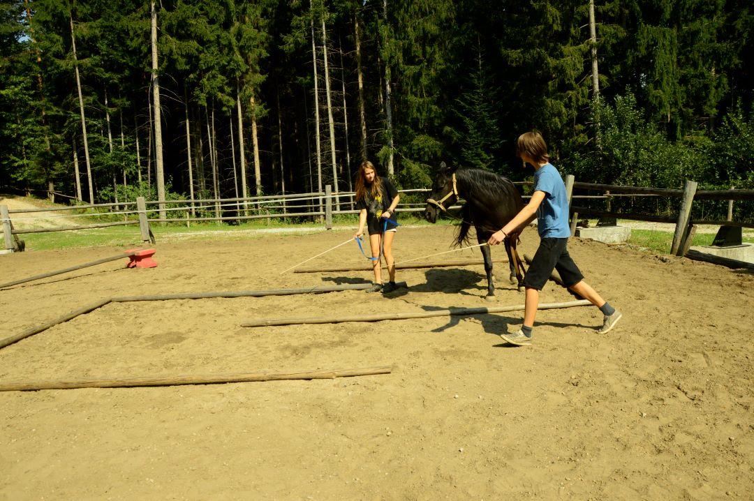 ranč kaja in grom Tellington TTouch mladi21