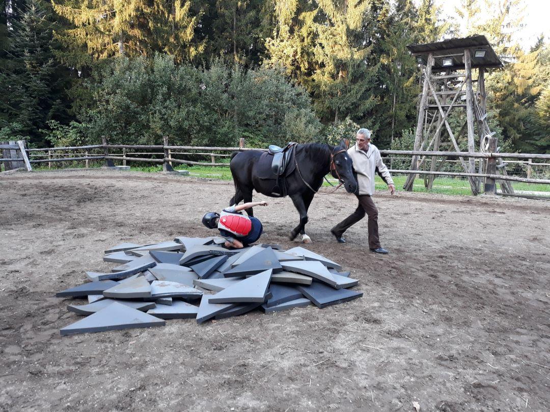 ranč kaja in grom Tellington TTouch projekt jadran padec iz konja
