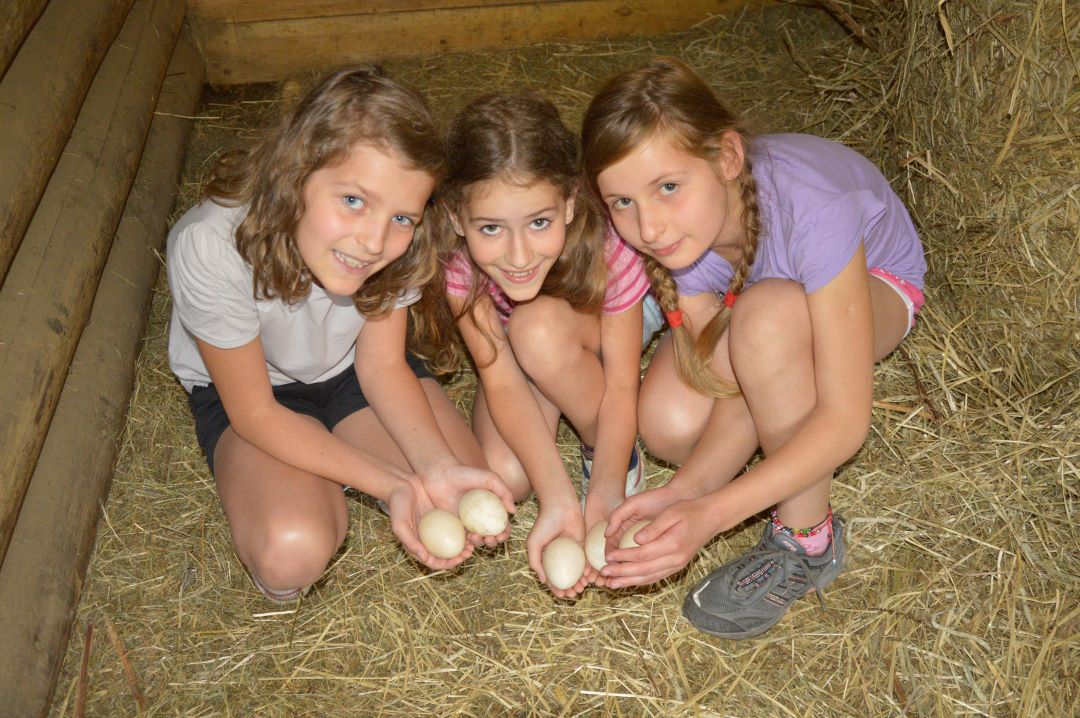 ranč kaja in grom animal ambassador center 2