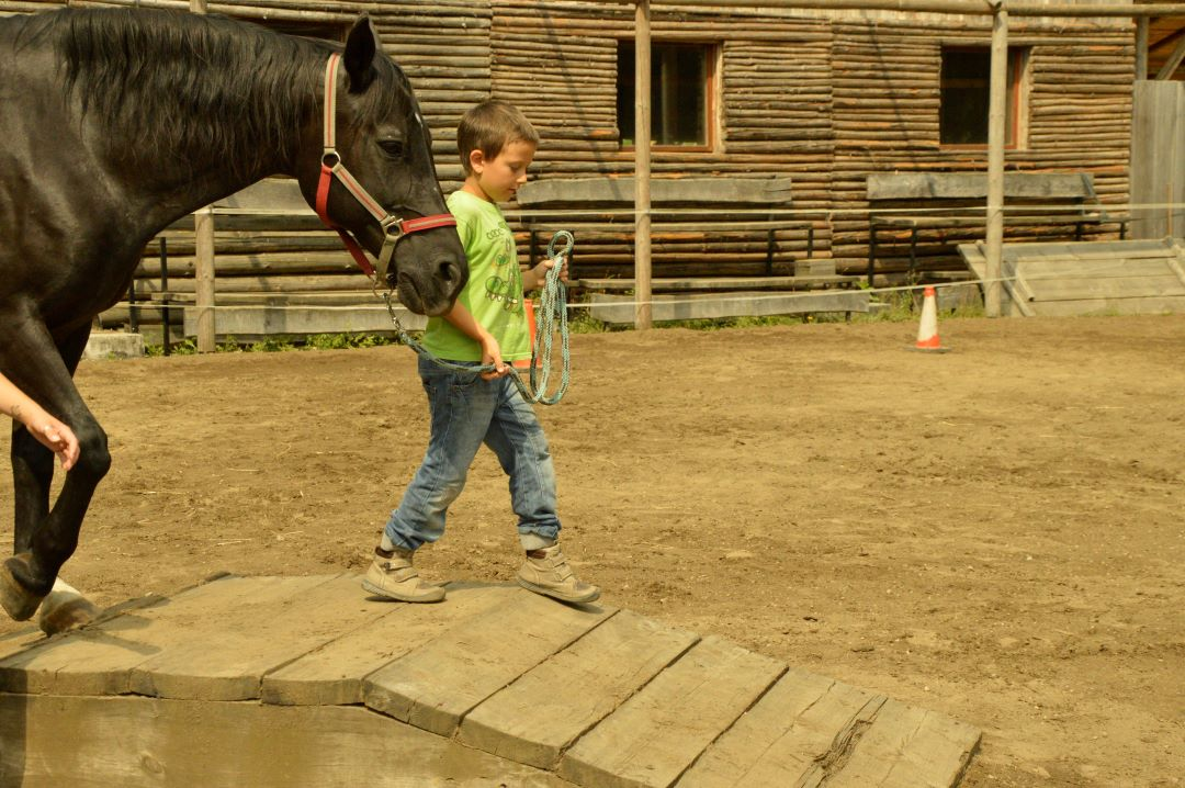 ranč kaja in grom equility2