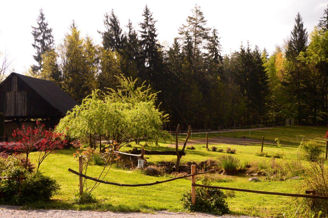 ranč kaja in grom okolica 7