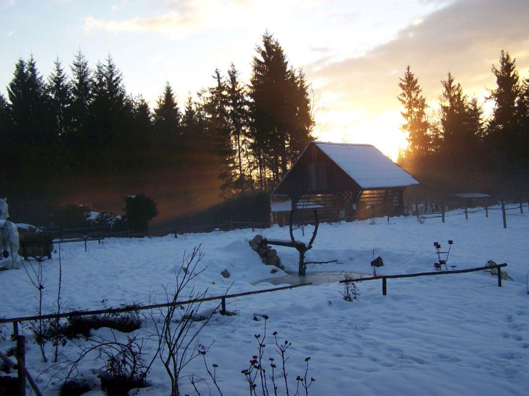 ranč kaja in grom okolica zima