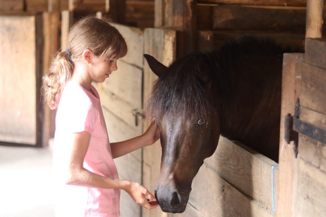 ranč kaja in grom otroci počitnice 18