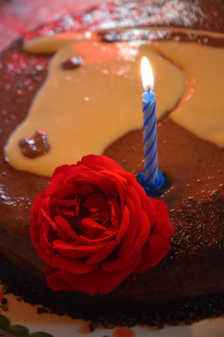 ranč kaja in grom otroci rojstni dan torta 1