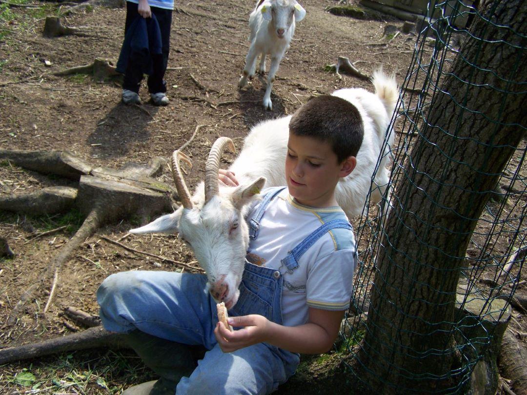 ranč kaja in grom otroci